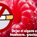 cigarro frambuesa